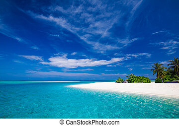 White tropical beach in Maldives with few palm trees and lagoon