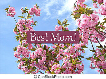 Mothers day greeting card isolated on white