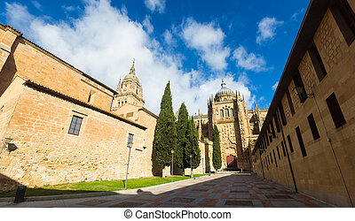 Wide angle shot of Cathedral of Salamanca, Spain