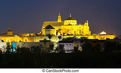 Cathedral of Our Lady of the Assumption in night time.  Cordoba
