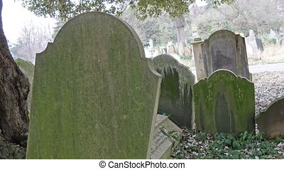 Some of the tombstones in the cemetery in London They are...