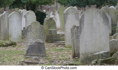 Lots of gravestones and tombstones in the cemetery. Some are...