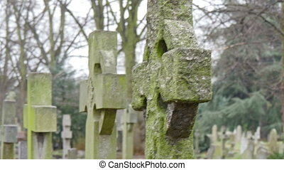 Old and mossy gravestones lined up in the cemetery. These...