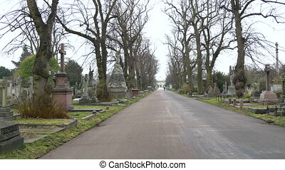 The street inside the cemetery surrounded with old trees The...