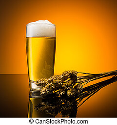 Beer with wheat ears - A german beer in a glass with corn...