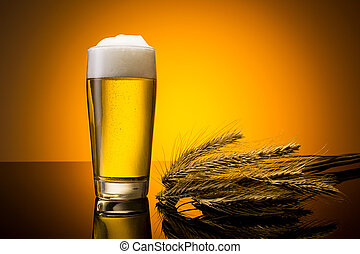 beer in a glass with corn ears - A glass of golden beer with...