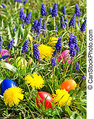 colorful easter eggs in spring grass with flowers