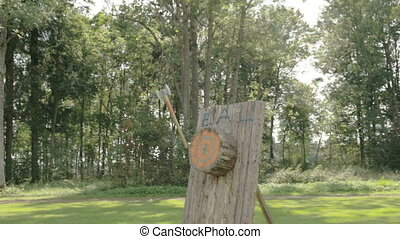 An axe thrown on the log but not on target The axe only...