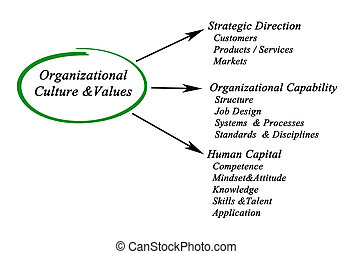 Organizational Culture and Values - Organizational...