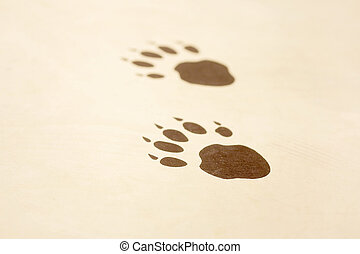 Animal footprints on a wooden surface