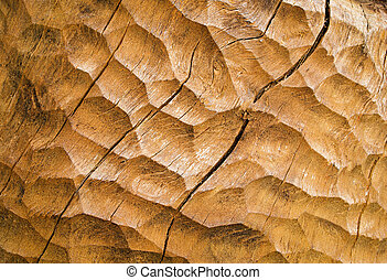 chiseled wood - abstract background or texture ocher...