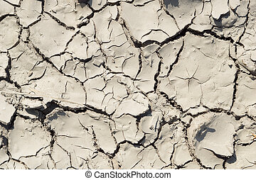Background - parched ground Background