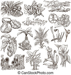 Flowers, Trees, Plants - An hand drawn pack. Originals. -...