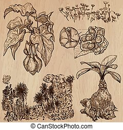 Flowers, Trees, Plants - Hand drawn vector pack - Flowers,...