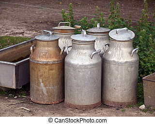 Milk cans jugs in a farm - Milk organic traditional cans...