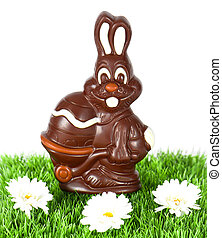 chocolate easter bunny with daisy flowers