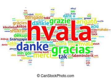 Croation: Hvala, Open Word Cloud, Thanks, on white - Focus...