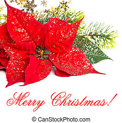 Red Poinsettia. Christmas Flower - Red Poinsettia. Marry...