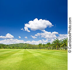 tropical landscape. golf field with palm trees