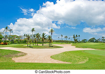 beautiful golf course. sand trap anf palm trees