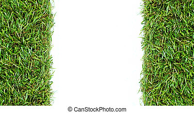 grass on a white background for text and message design