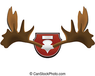 hunting trophy - horns - The hunting trophy - horns of an...