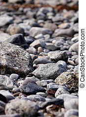 Rock Background - A coastal rock background with round water...