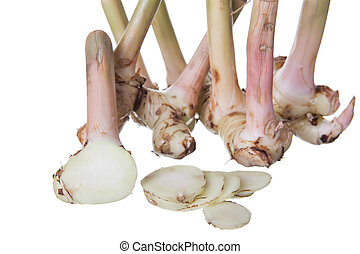 galangal - Galangal oil isolated on a white background