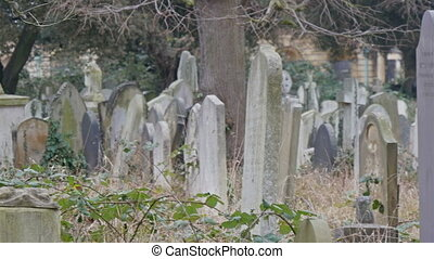 Tall tombs and gravestones inside the cemetery White...