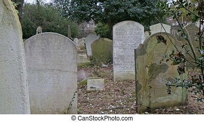 Gravestones in an old cemetery in London. In this cemetery...
