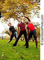 Group Exercise - A group of people exercising in a park