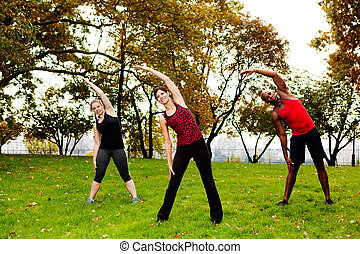 Fitness park - A group of people stretching in a park