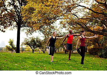 Stretching Fitness - A group of people in the park...