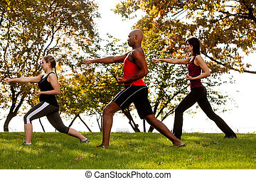 Karate - A group of people practicing martial arts in the...