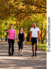 Exercise Park - Three people walking in a park, getting some...