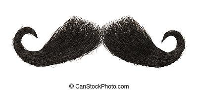 bigote,