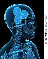 gears in brain - 3d rendered x-ray illustration of human...