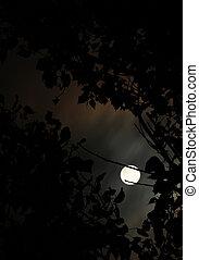 lua, entre, árvores,