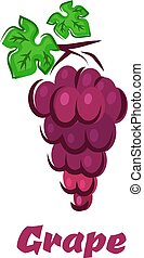 Cartoon grape with bunch and leaves - Grape bunch in cartoon...