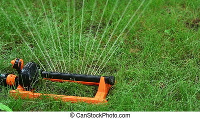 Irrigation - Device for automatic irrigation, close-up