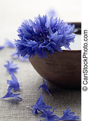Cornflower - Blue cornflower in brown bowl