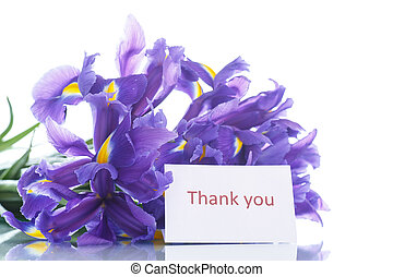 bouquet of irises - beautiful bouquet of flowers irises on a...