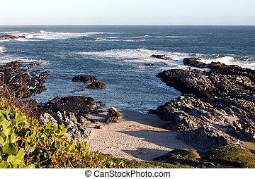 Coastline Scenery
