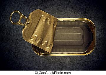 ouvert, vide, sardine, Fish, ÉTAIN, boîte,...