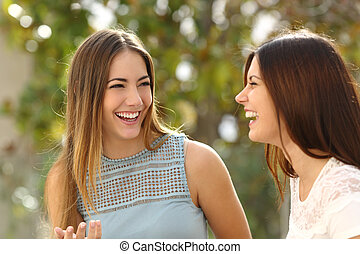 Happy women talking and laughing in a park with a green...