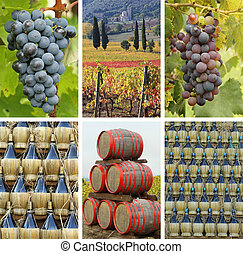 fantastic tuscan winery collage, Italy, Europe