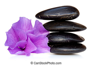 Massage Stones with Hibiscus Flower - Stack of black spa...