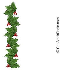 Natale, agrifoglio, bordo, illustrazione