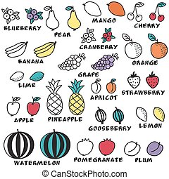 Set of doodle fruits - for scrapbook or design. hand-drawn vector illustration.