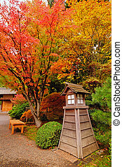 Autumn in a park - Fall colors in a park with an attractive...